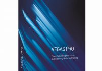 Sony Vegas Pro 18.0.42 Crack With Torrent Free Download 2020